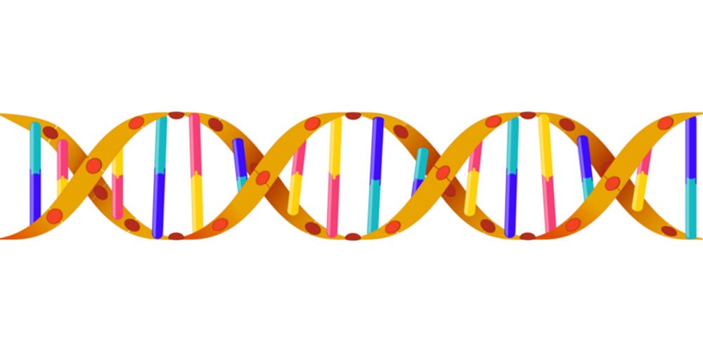 Mission Driven DNA