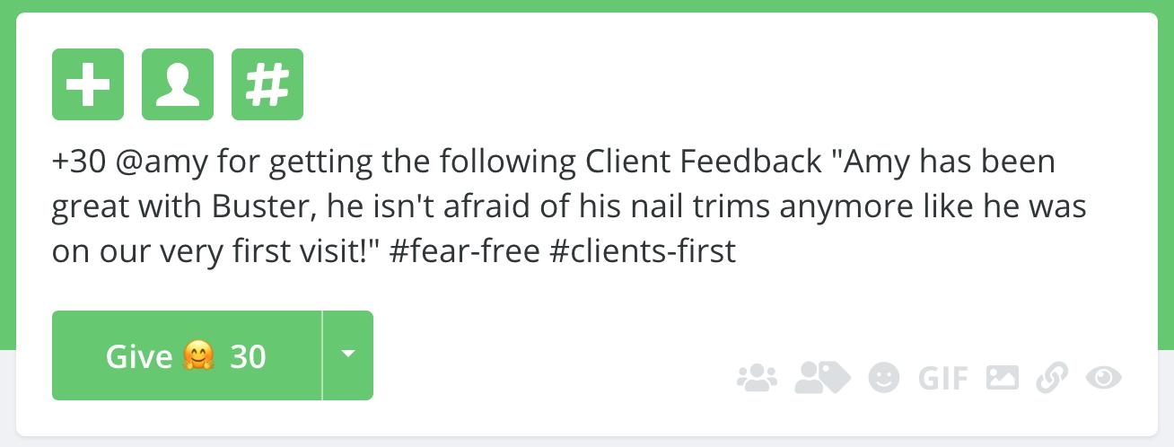 vet-example-bonus-fear-free