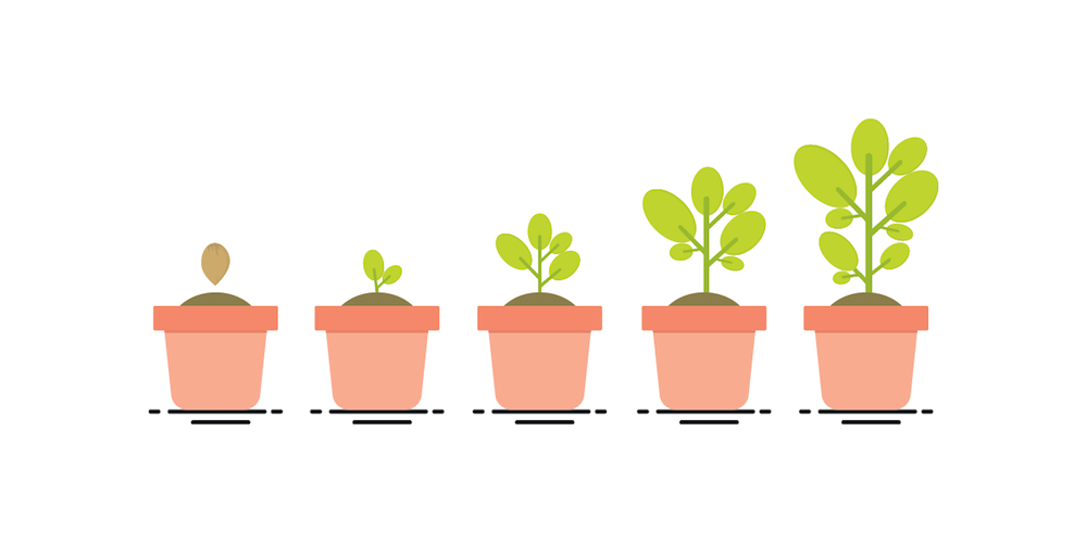How to Optimize Your Employee Lifecycle